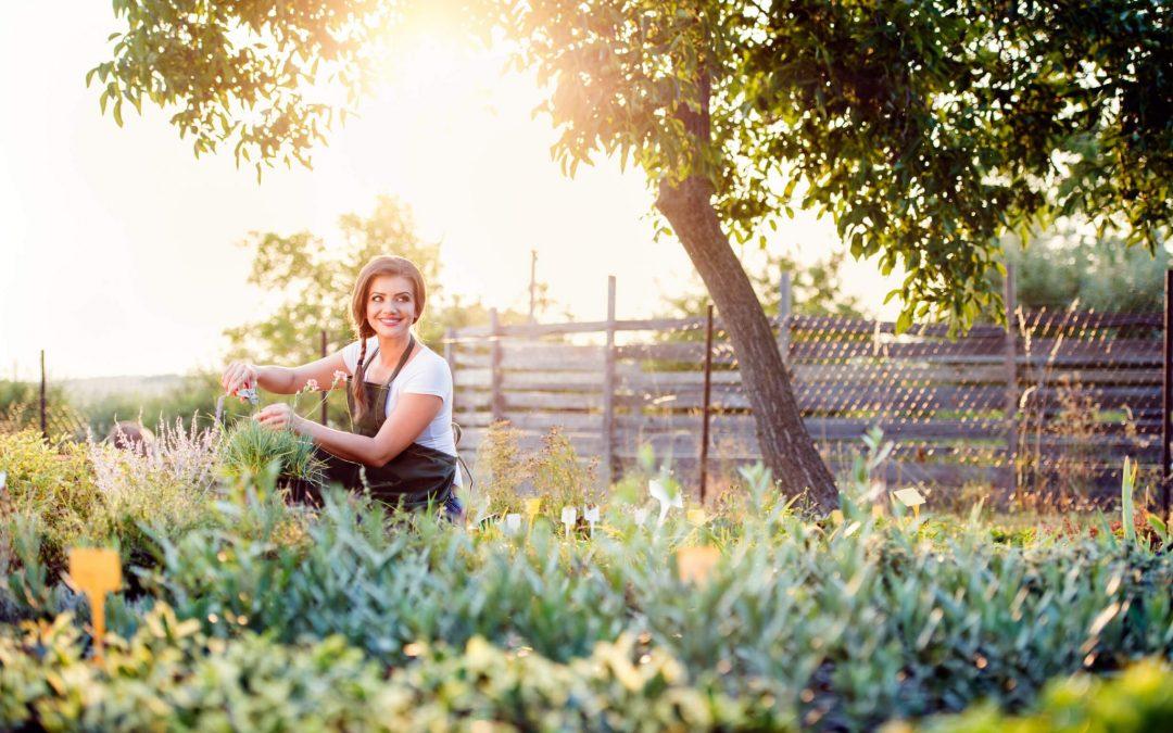 Deze 3 kruiden zijn natuurlijke rustgevers | Tips voor meer ontspanning